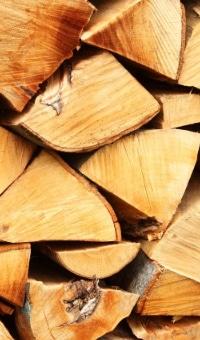 energie renouvelable biomasse